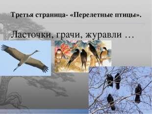Третья страница- «Перелетные птицы». Ласточки, грачи, журавли …