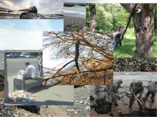 Исследовательская группа экологов