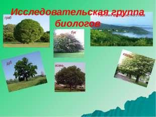 Растения широколистного леса дуб граб бук ясень каштан Исследовательская груп