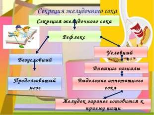 Секреция желудочного сока Секреция желудочного сока Безусловный Условный Рефл