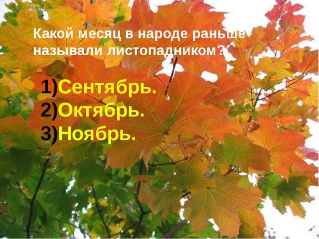 Какой месяц в народе раньше называли листопадником? Сентябрь. Октябрь. Ноябрь.