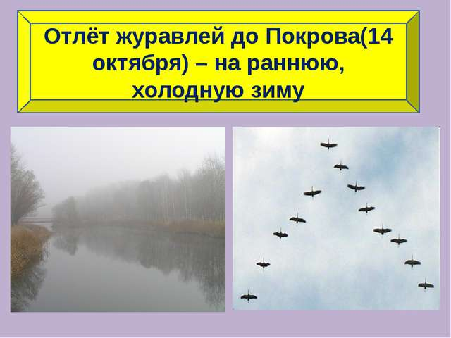 Отлёт журавлей до Покрова(14 октября) – на раннюю, холодную зиму