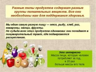 Мы едим самую разную пищу — мясо, рыбу, хлеб, рис, макароны, овощи, фрукты. Н