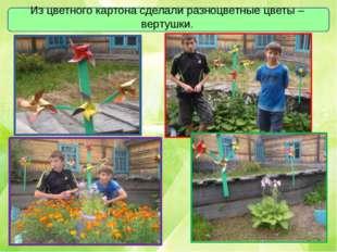 Из цветного картона сделали разноцветные цветы – вертушки.