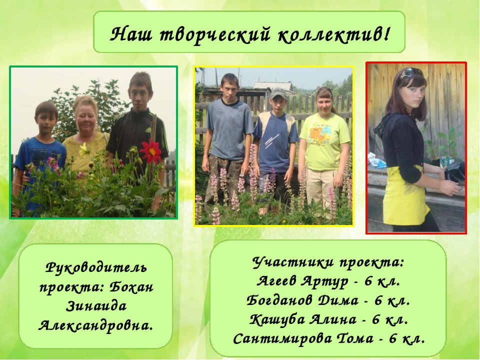 Наш творческий коллектив! Руководитель проекта: Бохан Зинаида Александровна....