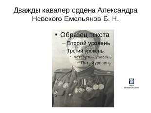 Дважды кавалер ордена Александра Невского Емельянов Б. Н.