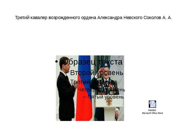 Третий кавалер возрожденного ордена Александра Невского Соколов А. А.