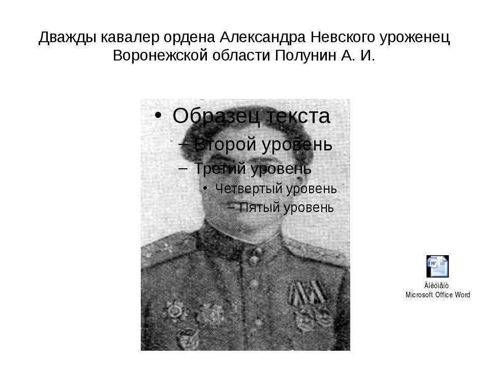 Дважды кавалер ордена Александра Невского уроженец Воронежской области Полуни...