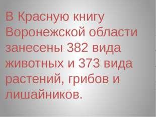 В Красную книгу Воронежской области занесены 382 вида животных и 373 вида рас