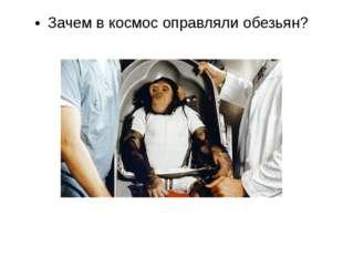 Кто из животных не был в космосе: обезьяна, кошка, черепаха, лягушка, улитка,