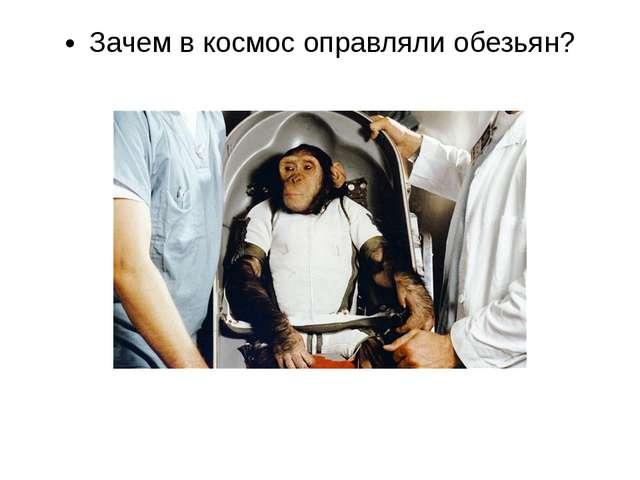 Кто из животных не был в космосе: обезьяна, кошка, черепаха, лягушка, улитка,...