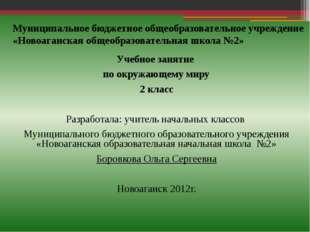 Муниципальное бюджетное общеобразовательное учреждение «Новоаганская общеобра