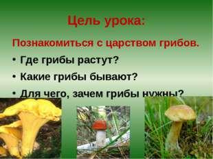 Цель урока: Познакомиться с царством грибов. Где грибы растут? Какие грибы бы