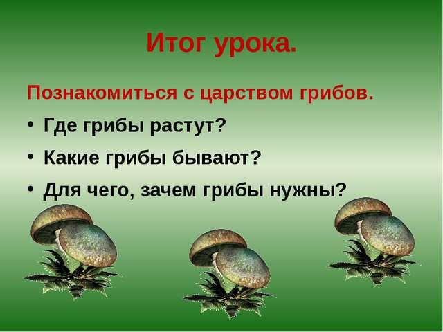 Итог урока. Познакомиться с царством грибов. Где грибы растут? Какие грибы бы...