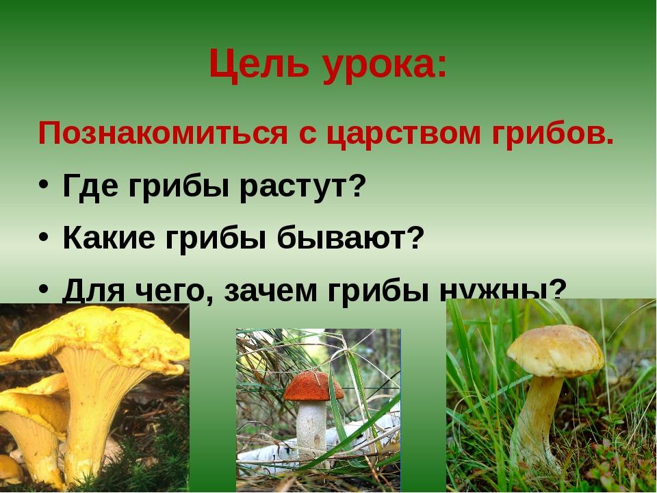 Цель урока: Познакомиться с царством грибов. Где грибы растут? Какие грибы бы...