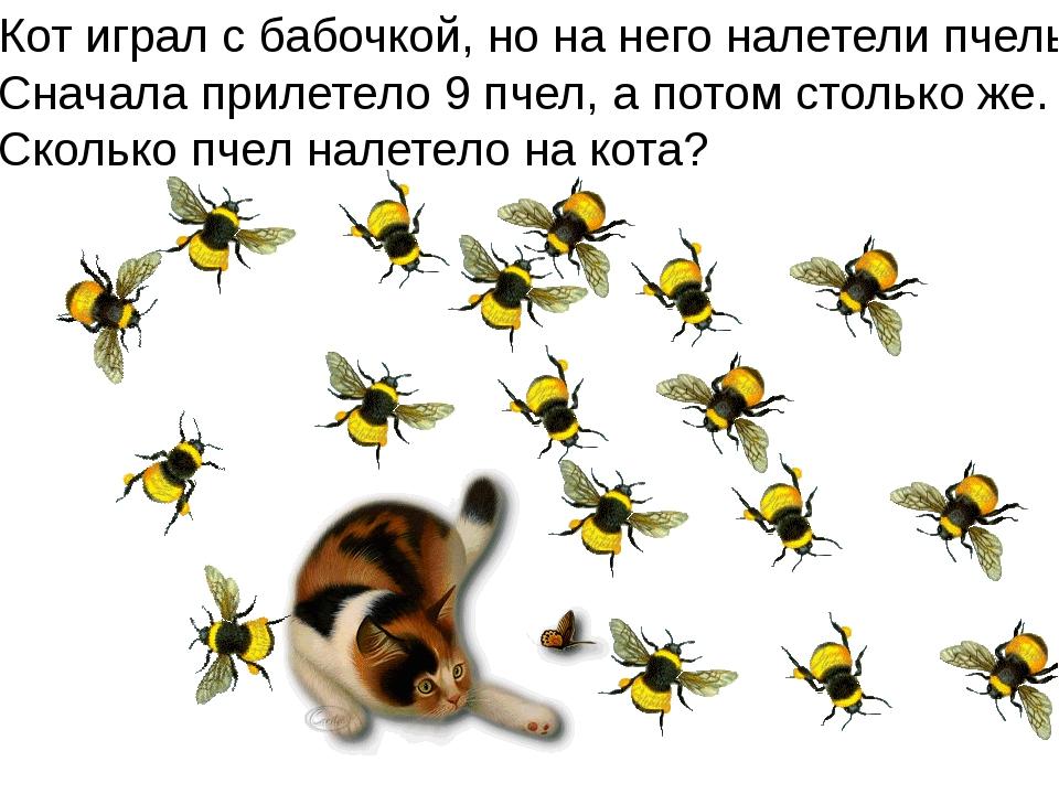 Кот играл с бабочкой, но на него налетели пчелы. Сначала прилетело 9 пчел, а...