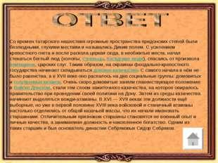 Со времен татарского нашествия огромные пространства придонских степей были б