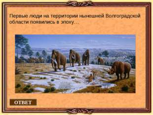 ОТВЕТ Первые люди на территории нынешней Волгоградской области появились в эп