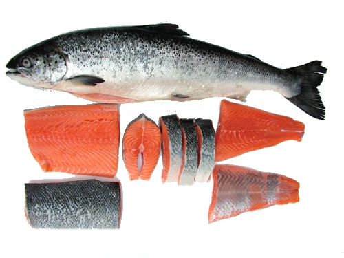 C:\Users\Галина\Desktop\Salmon-fish-images.jpg