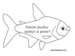 Какие рыбы живут в реке?