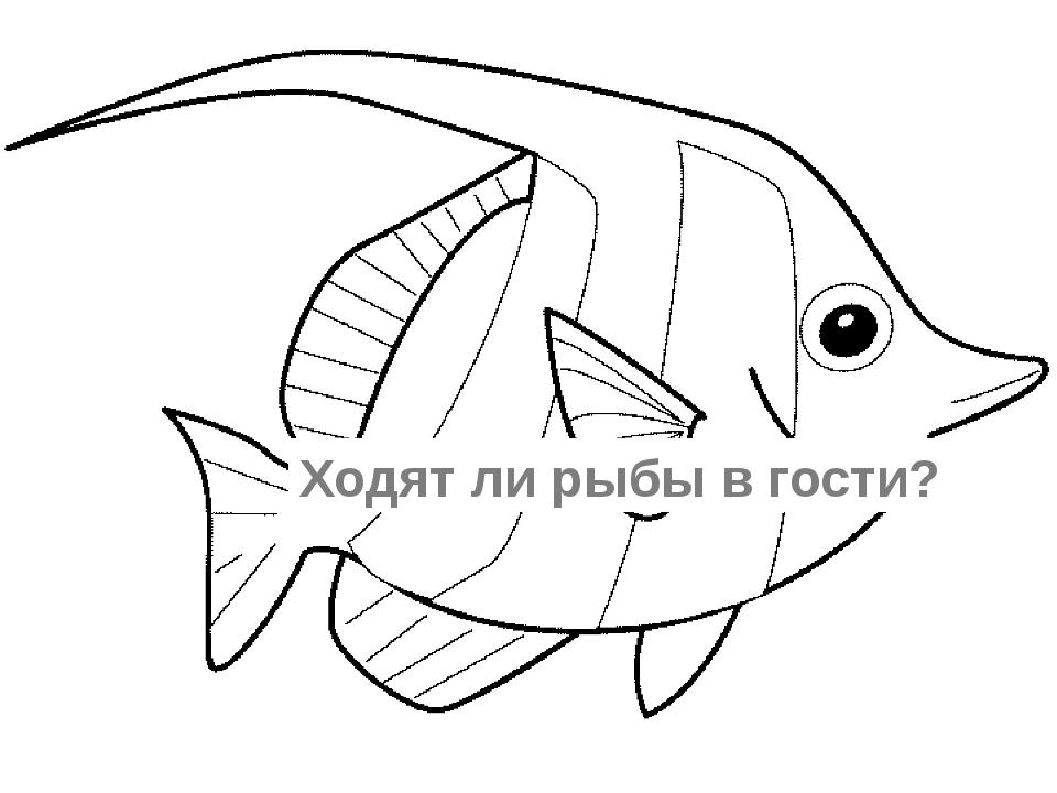 Ходят ли рыбы в гости?