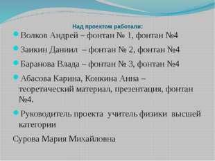 Над проектом работали: Волков Андрей – фонтан № 1, фонтан №4 Заикин Даниил –