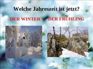 Welche Jahreszeit ist jetzt? DER WINTER DER FRÜHLING