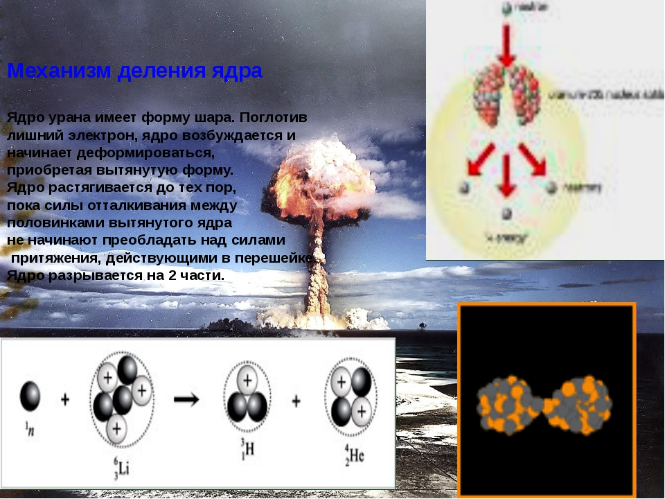 Механизм деления ядра Ядро урана имеет форму шара. Поглотив лишний электрон,...