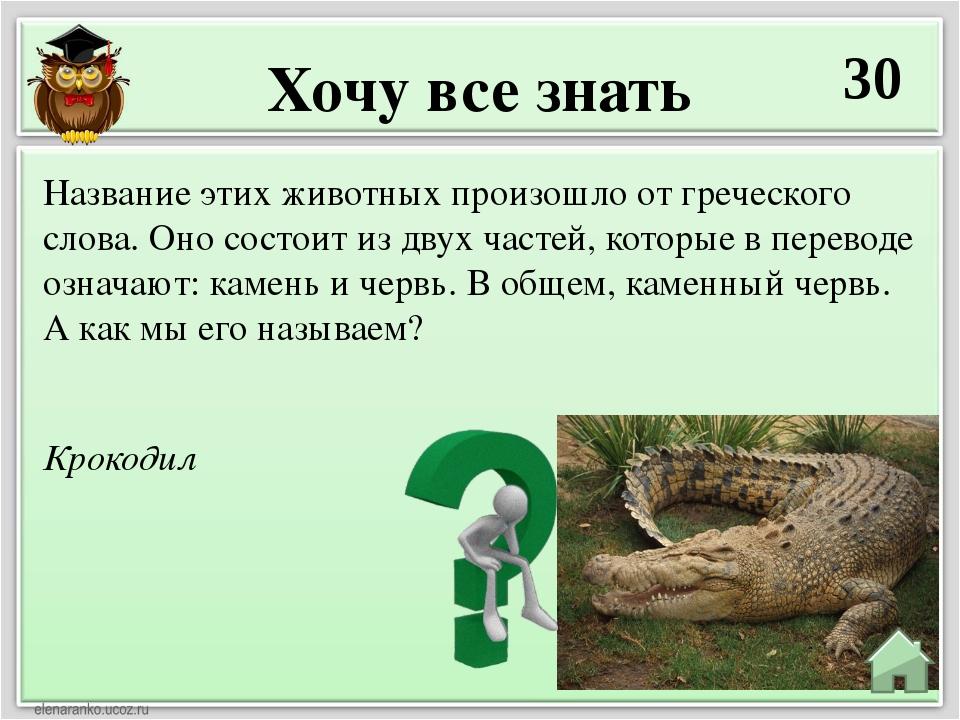Хочу все знать 30 Крокодил Название этих животных произошло от греческого сло...