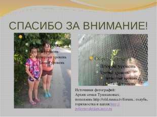 СПАСИБО ЗА ВНИМАНИЕ! Источники фотографий: Архив семьи Тушкановых; поползень: