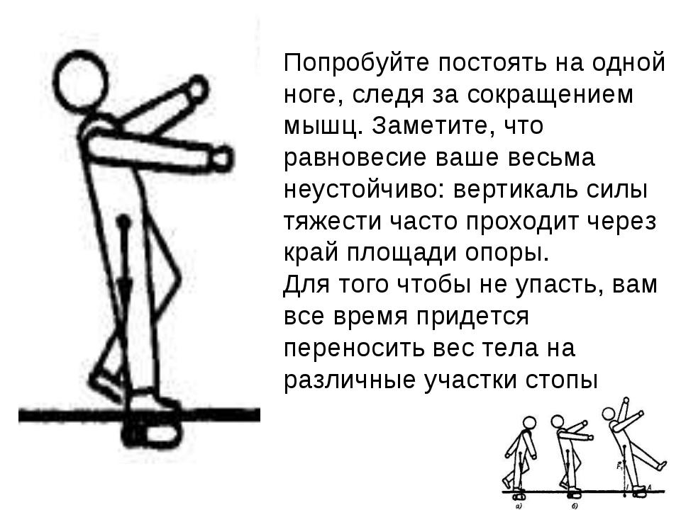 Попробуйте постоять на одной ноге, следя за сокращением мышц. Заметите, что р...