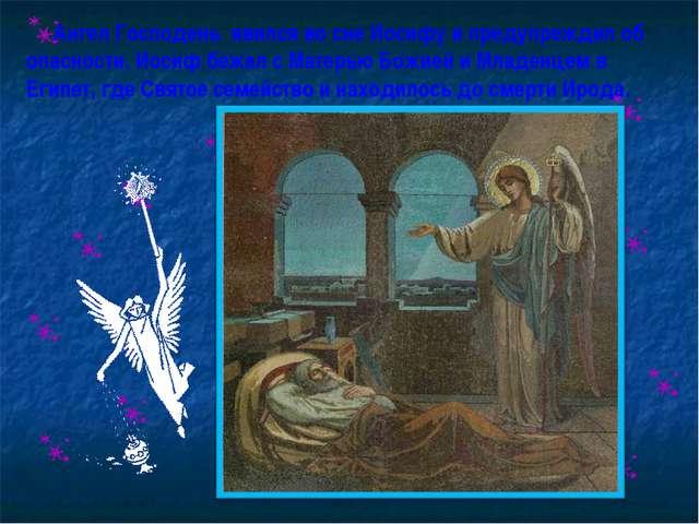 Ангел Господень явился во сне Иосифу и предупреждил об опасности. Иосиф бежа...
