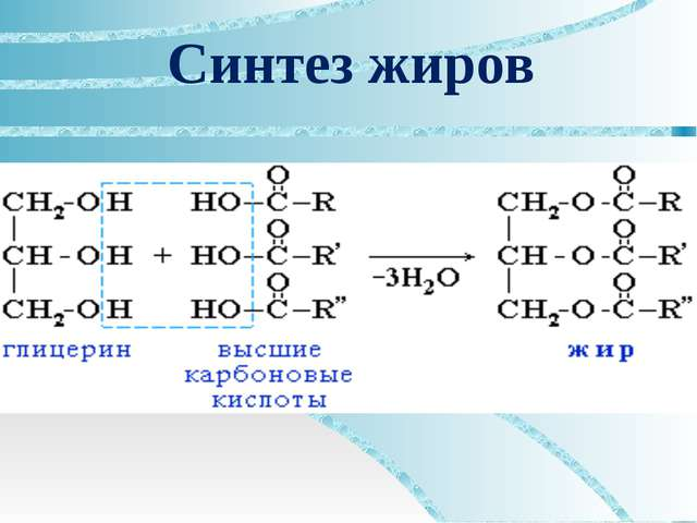 Синтез жиров
