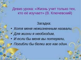 Девиз урока: «Жизнь учит только тех, кто её изучает» (В. Ключевский) Загадка: