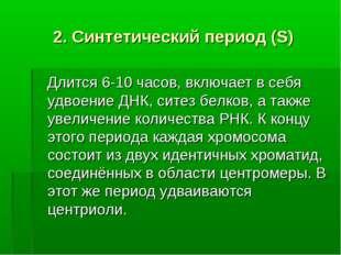 2. Синтетический период (S) Длится 6-10 часов, включает в себя удвоение ДНК,
