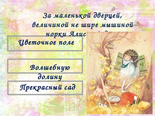Прекрасный сад Волшебную долину Цветочное поле За маленькой дверцей, величин...