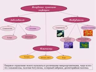 Желудочно- кишечные инфекции Заболевания Возбудители Источники Сальмонеллёз Б