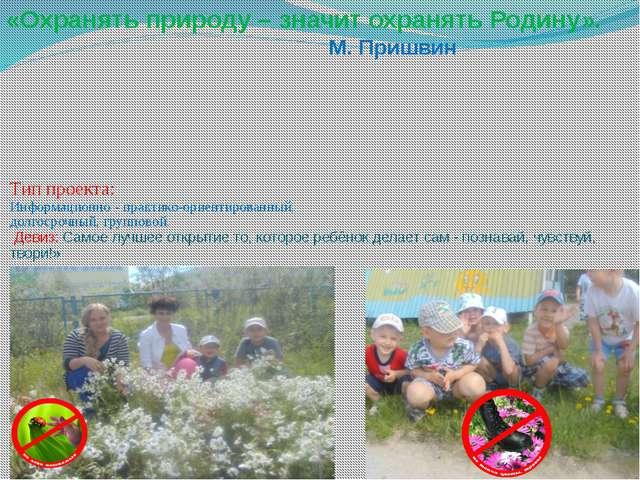 Тип проекта:  Информационно - практико-ориентированный,  долгосрочный, группо...