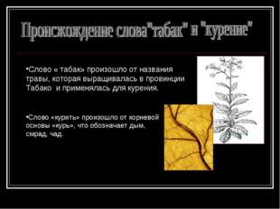 Слово « табак» произошло от названия травы, которая выращивалась в провинции