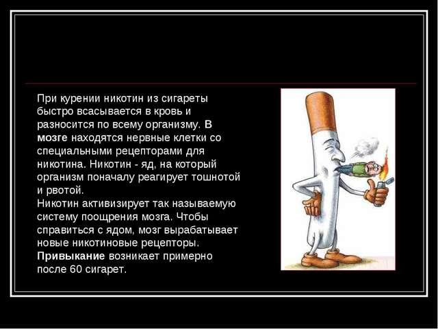 При курении никотин из сигареты быстро всасывается в кровь и разносится по вс...
