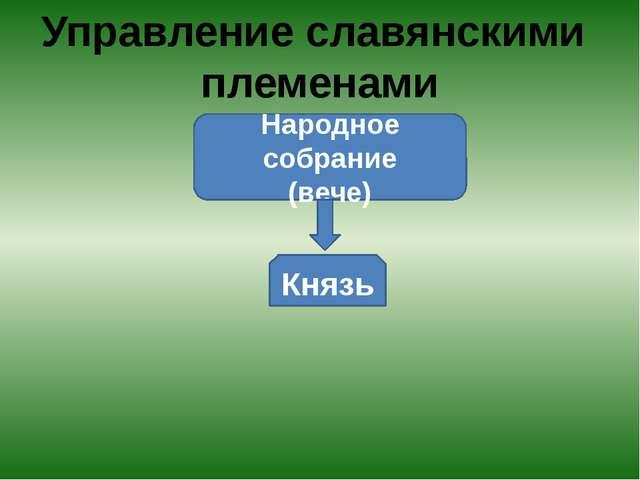 Управление славянскими племенами Народное собрание (вече) Князь