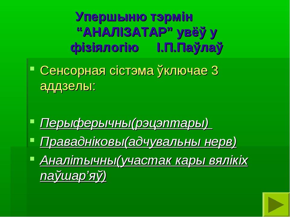 """Упершыню тэрмін """"АНАЛІЗАТАР"""" увёў у фізіялогію І.П.Паўлаў Сенсорная сістэма ў..."""