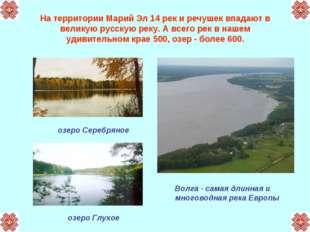 На территории Марий Эл 14 рек и речушек впадают в великую русскую реку. А все