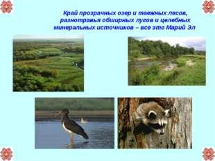 Край прозрачных озер и таежных лесов, разнотравья обширных лугов и целебных м