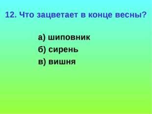12. Что зацветает в конце весны? а) шиповник б) сирень в) вишня