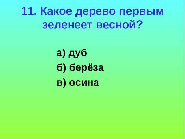 11. Какое дерево первым зеленеет весной? а) дуб б) берёза в) осина