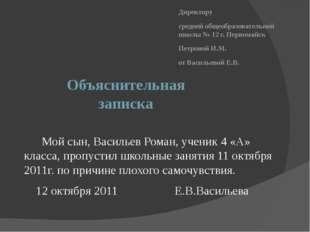 Объяснительная записка Директору средней общеобразовательной школы № 12 г. Пе