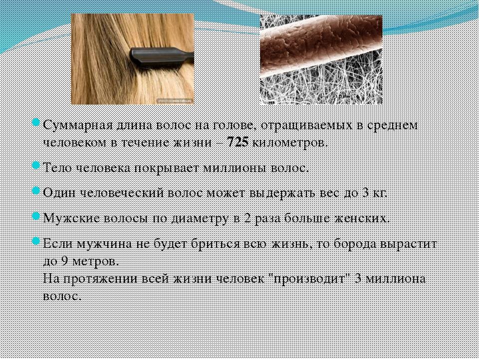 Суммарная длина волос на голове, отращиваемых в среднем человеком в течение...