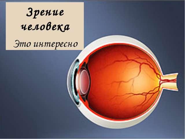 Зрение человека Это интересно