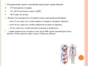 Распределение крови в организме происходит таким образом: •5 % наход